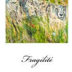 Fragilité : Huile sur toile 35x27cm